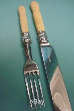 Antique Victorian Sterling Silver HM Collar LOTUS Plated cutlery fork knife box